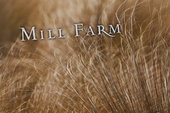 Millbrook Mill Farm Book Thumb